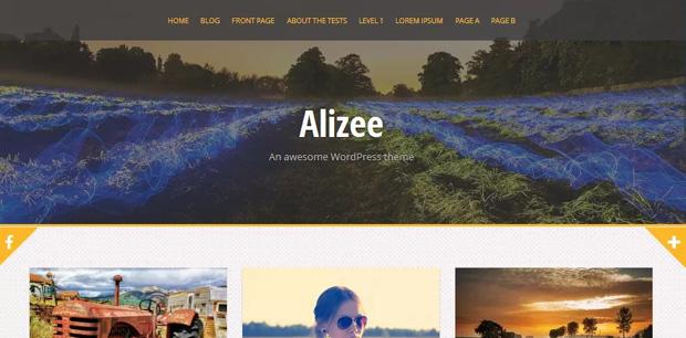 alizee wordpress theme